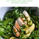 eBook Review:  'Let's do Lunch' - AIP Lunches made easy!